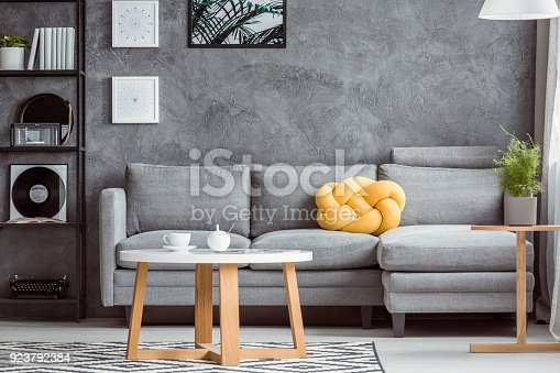 Close-up photo, contemporary design of cozy gray living room interior with simple sofa, coffee table, rack, plant and yellow accent