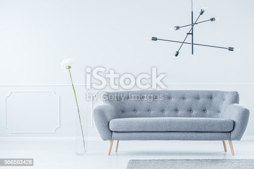 istock Gray sofa in modern interior 956563426