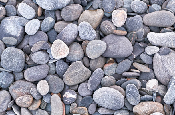 Gray Stones on the beach. stock photo