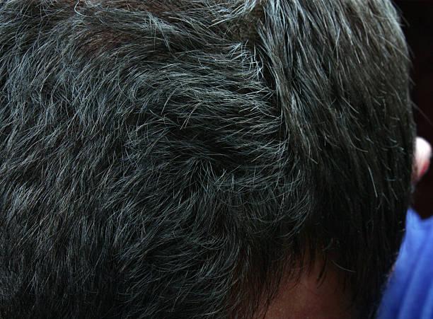 graying haar - schichthaare stock-fotos und bilder