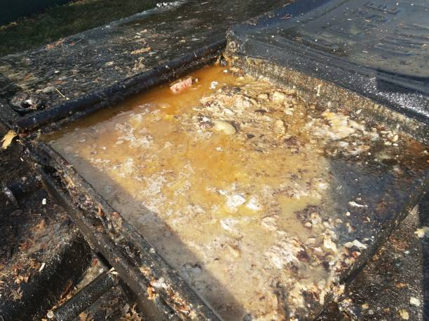 grease and juices overflowing from grease trap stock photo