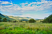 Shot of great African savanna grassland and hills and blue skies