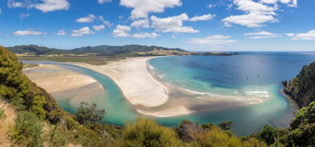 great barrier island landscape - estuário imagens e fotografias de stock