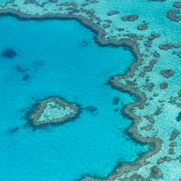 Great Barrier Reef, Australia. Aerial view stock photo