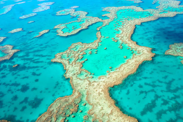 great barrier reef from above - great barrier reef stock pictures, royalty-free photos & images