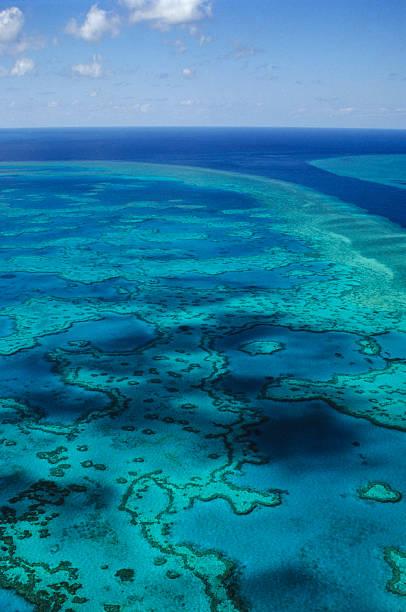 Great Barrier-Riff – Foto