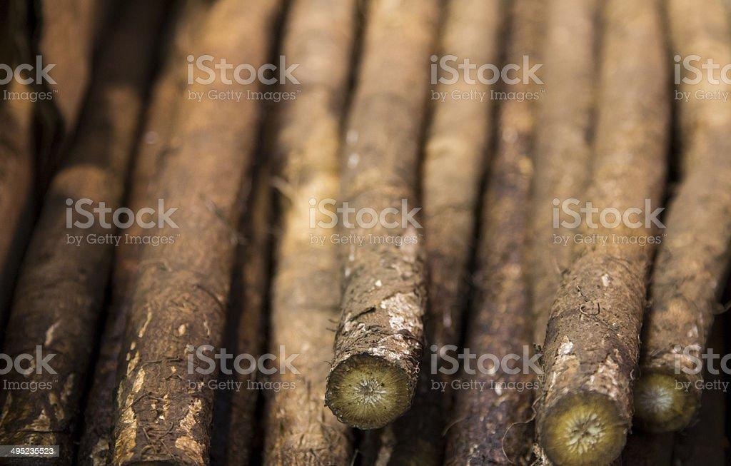 Grande Burdock radici - foto stock