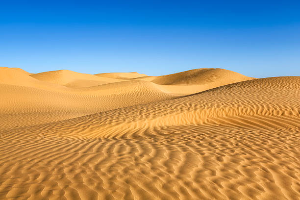 great eastern sand sea in the sahara of tunisia - sand dune stock photos and pictures