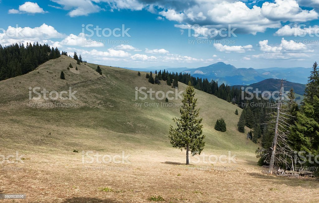 Great Fatra mountain range, Slovakia stock photo