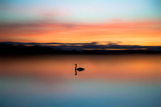 Great Lakes sunset stock photo