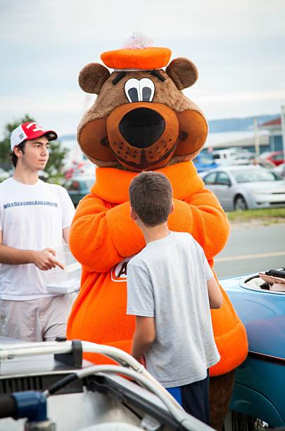 une grande racine & w mascotte ours - mascotte photos et images de collection