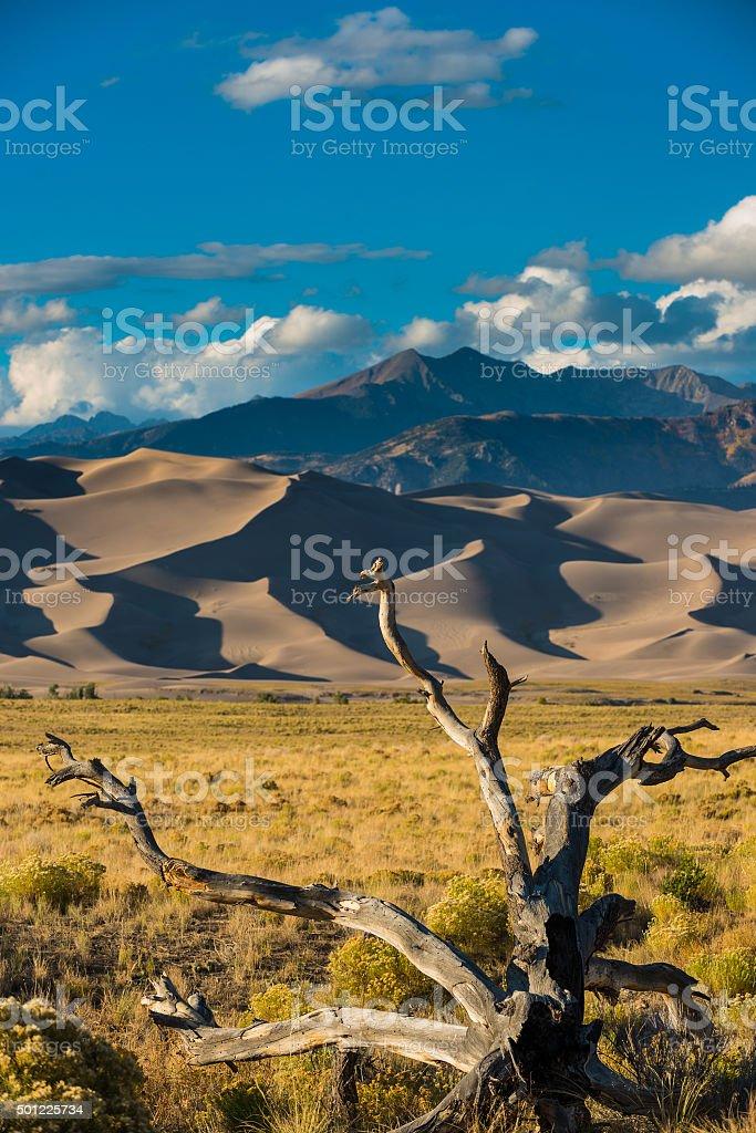 Great Sand Dunes National Park Colorado stock photo
