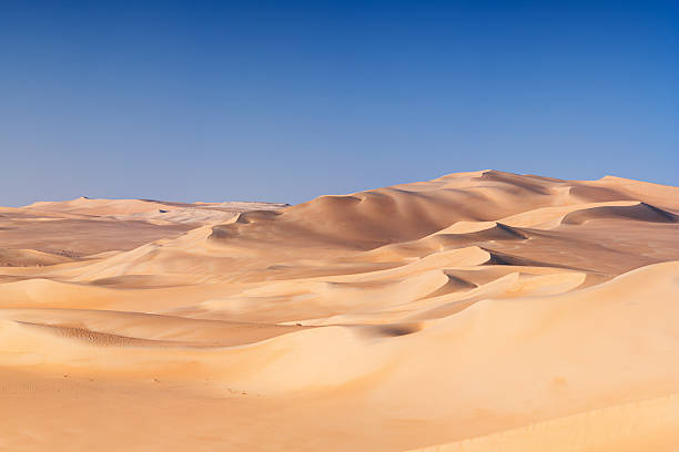 great sand sea, sahara desert, africa - 沙漠 個照片及圖片檔