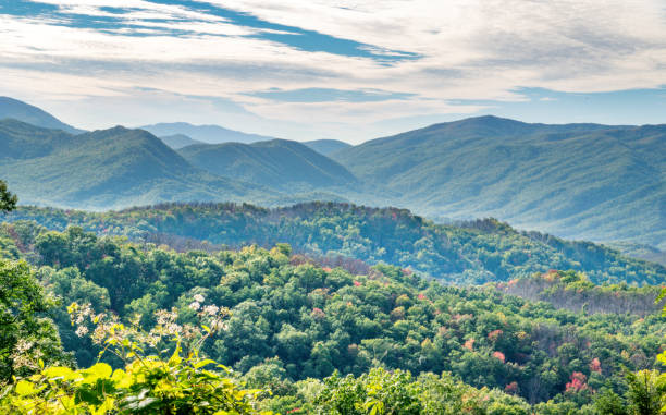 Great Smokey Mountains National Park in Autumn Panoramic View of the Great Smokey Mountains near Gatlinburg, Tennessee - Great Smokey Mountains National Park, Tennessee, USA pigeon forge stock pictures, royalty-free photos & images