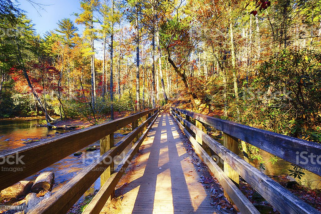Great Smoky Mountains in Autumn stock photo