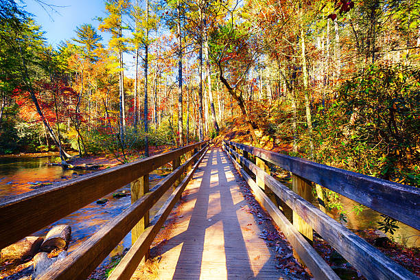 Great Smoky Mountains im Herbst – Foto