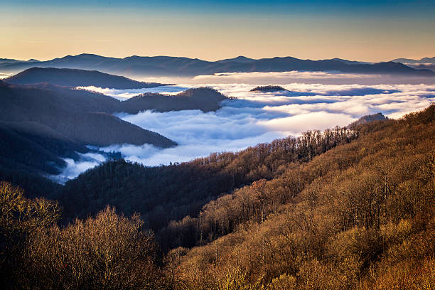 Great Smoky Mountains National Park, from Newfound Gap Road Early Morning view from the Newfound Gap Road in Great Smoky Mountains National Park, North Carolina, USA. pigeon forge stock pictures, royalty-free photos & images