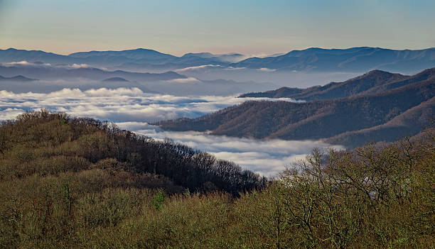 Great Smoky Mountains National Park, from Newfound Gap Road An early morning view of Great Smoky Mountains National Park, from Newfound Gap Road. pigeon forge stock pictures, royalty-free photos & images