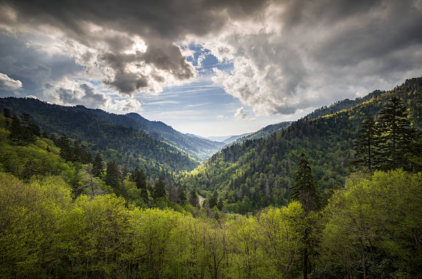 Great Smoky Mountains National Park Mortons Overlook Scenic Landscape Gatlinburg Great Smoky Mountains National Park Mortons Overlook Scenic Landscape Gatlinburg TN with spring greens and dramatic sky appalachian trail stock pictures, royalty-free photos & images