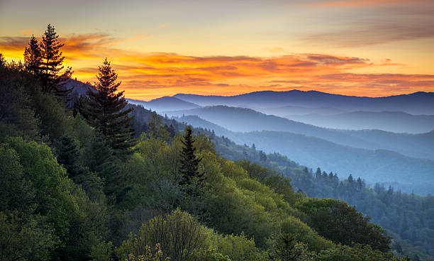 Great Smoky Mountains National Park Scenic Sunrise Landscape at Oconaluftee Great Smoky Mountains National Park Scenic Sunrise Landscape at Oconaluftee Overlook between Cherokee NC and Gatlinburg TN appalachia stock pictures, royalty-free photos & images