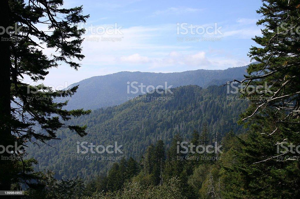 Great Smoky Mountains royalty-free stock photo