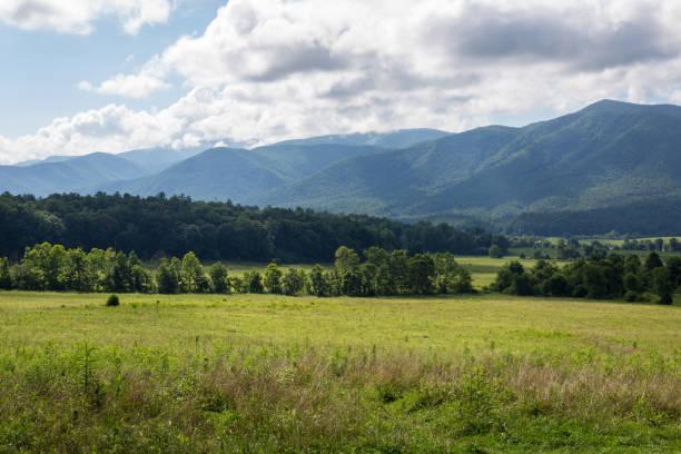 Great Smoky Mountains stock photo