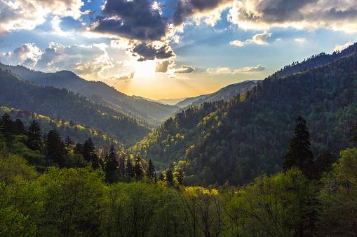 View from the Newfound Gap overlook over the vast wilderness of the Great Smoky Mountains National Park on the border of North Carolina and Tennessee.