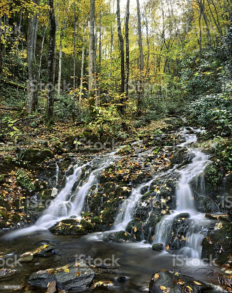 Great Smoky Mountains Waterfall royalty-free stock photo