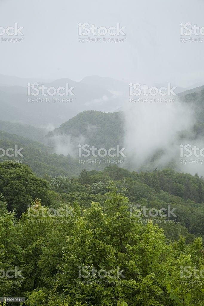Great Smoky Mtns Nat. Park, TN-NC stock photo