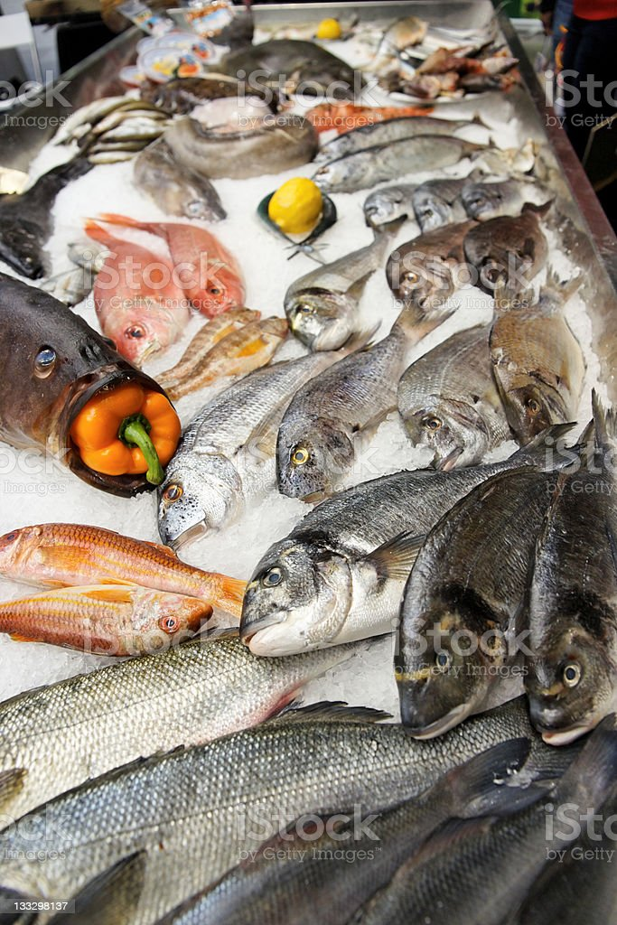 Great variety of fish royalty-free stock photo