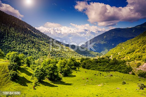 Great view of the alpine meadows with blue sky at the foot of Mt. Ushba. Dramatic unusual scene. Upper Svaneti, Georgia, Europe. The main Caucasus ridge. Beauty world.