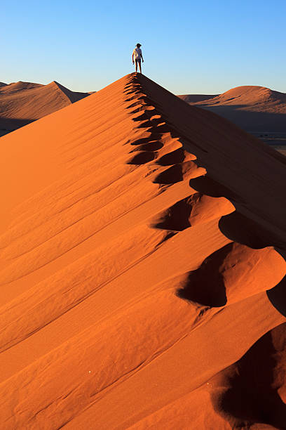 Great view  namibia stock pictures, royalty-free photos & images