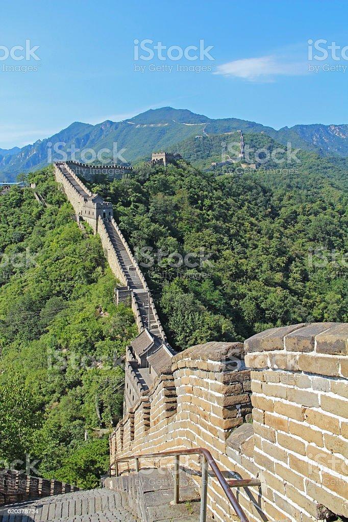 Grande Muralha da China no verão. foto de stock royalty-free