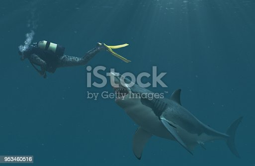 Great white shark about to attack a diver