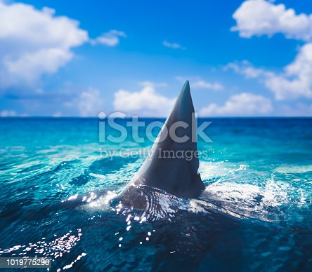 Great white shark fin above water / 3d illustration / mixed media