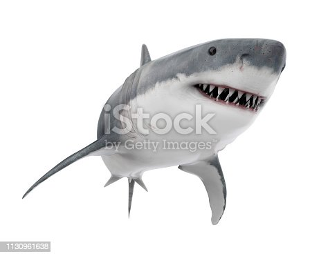 Great White Shark isolated on white background. 3D render