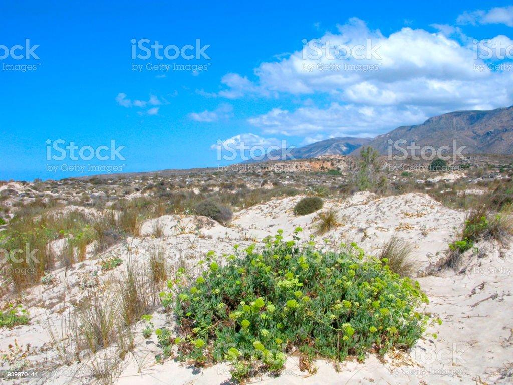 Greece, Crete, nature reserve Elafonisi stock photo