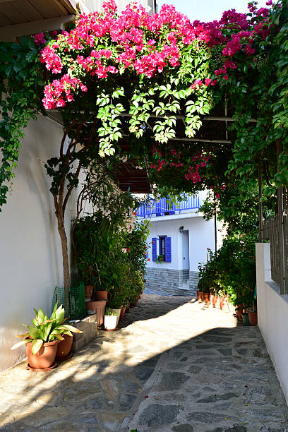 Greece, Skopelos Island Skopelos island, street of Glossa glossa stock pictures, royalty-free photos & images