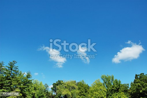 Tree tops and blue sky dotted with clouds.  Some of My Personal Collections: