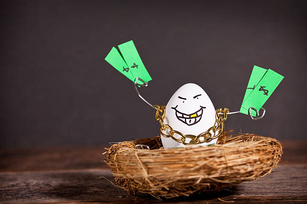 Greedy Nest Egg Holding Cash A personified egg sitting in a nest holding money and wearing a gold chain and a gold tooth. gold teeth bling stock pictures, royalty-free photos & images