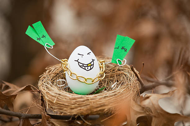 Greedy Nest Egg Sitting In A Tree A personified egg sitting in a nest in a tree holding money and wearing a gold chain and a gold tooth. gold teeth bling stock pictures, royalty-free photos & images