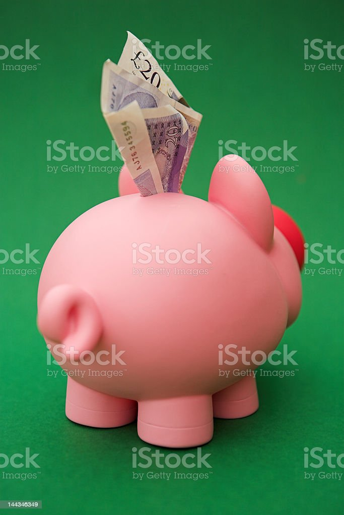 Greedy pig! royalty-free stock photo