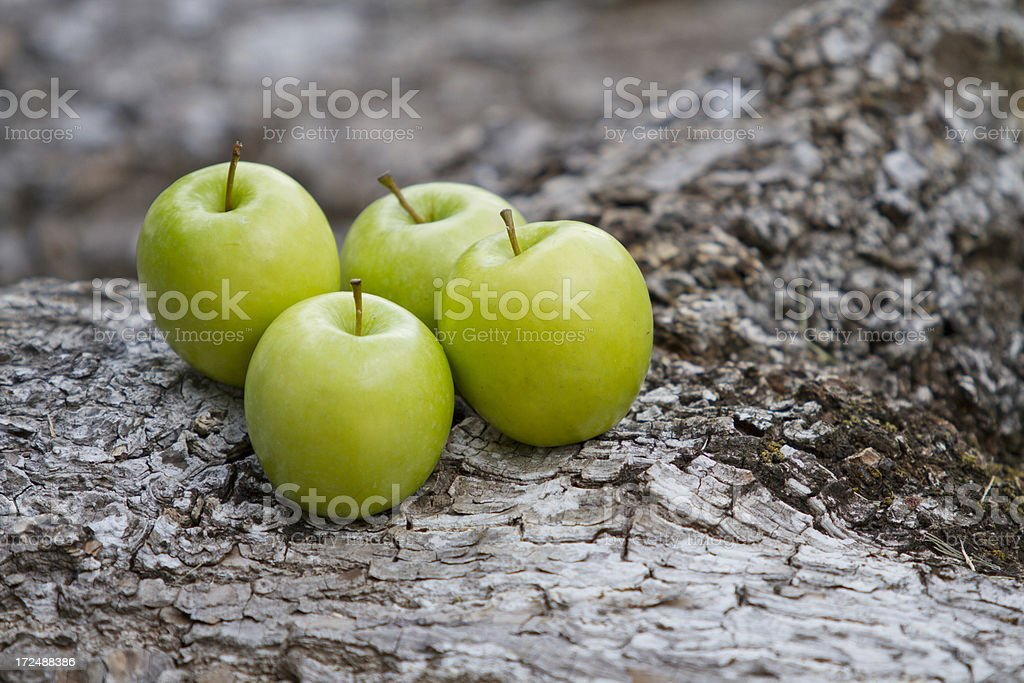 Greeen Apples royalty-free stock photo