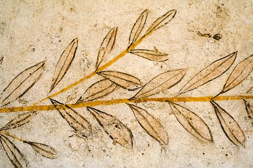 Greek Fresco of Olive Leaves