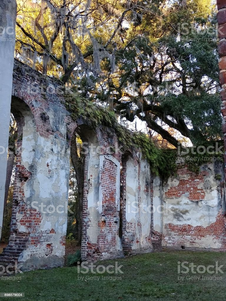 Greek Revival Abandoned Old Sheldon Church Ruins Interior, Bluffton SC stock photo