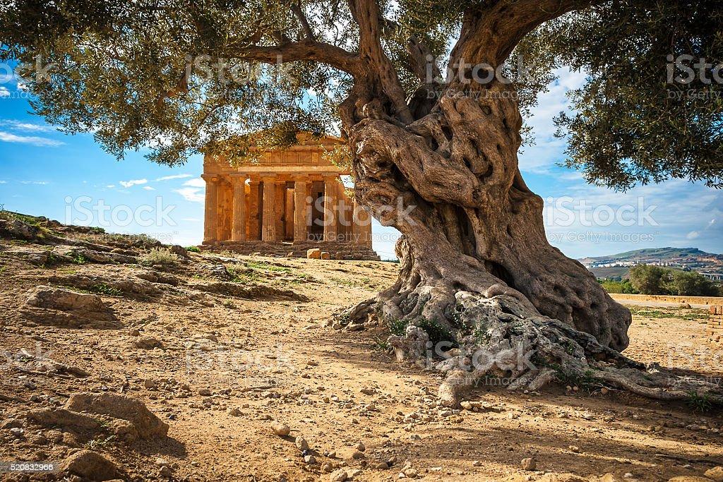 Tempio greco - foto stock
