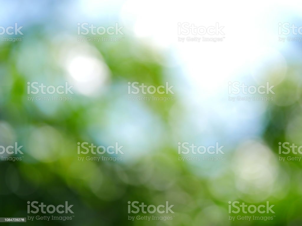 Green Abstract Background in public garden stock photo