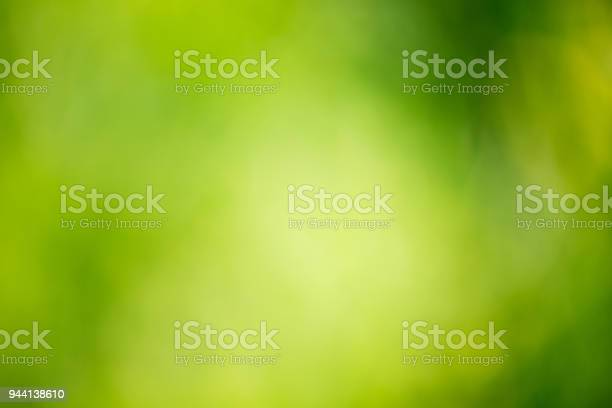 Photo of Green abstract background