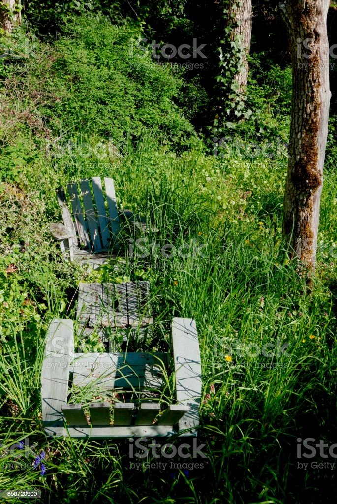 Green adirondack chairs in long grass stock photo