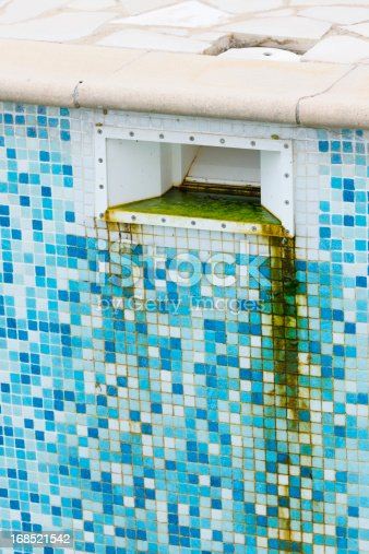 Green Algae Grunge before Cleaning Tiled Swimming Pool